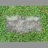 Thdea Johnson gravestone Glenwood Cemetery, Bristol, TN